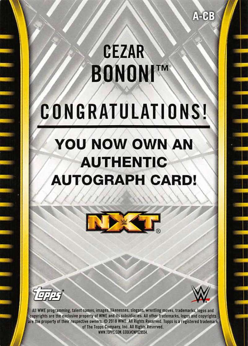 2018-Topps-WWE-NXT-Base-Bronze-Blue-or-Silver-Autographs-Pick-From-List thumbnail 9
