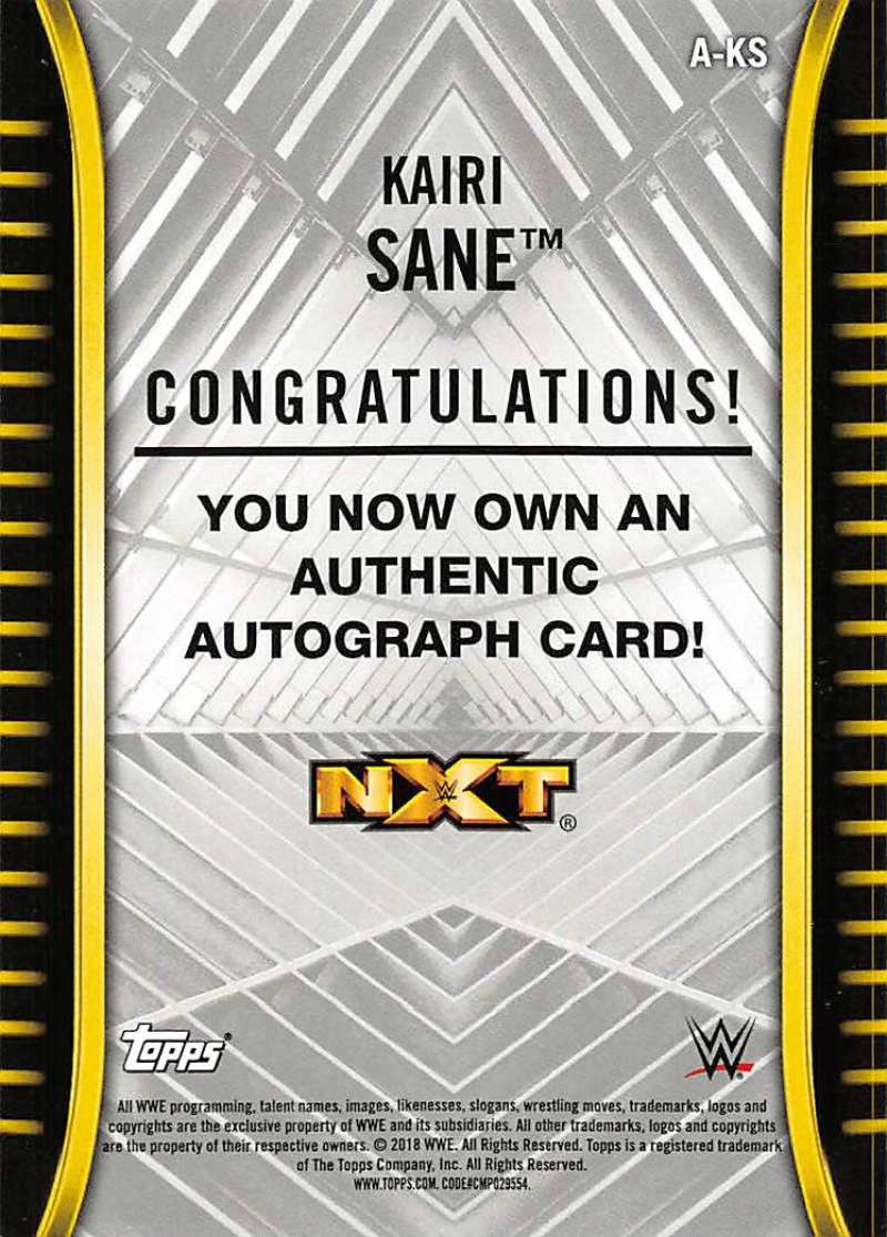 2018-Topps-WWE-NXT-Base-Bronze-Blue-or-Silver-Autographs-Pick-From-List thumbnail 17