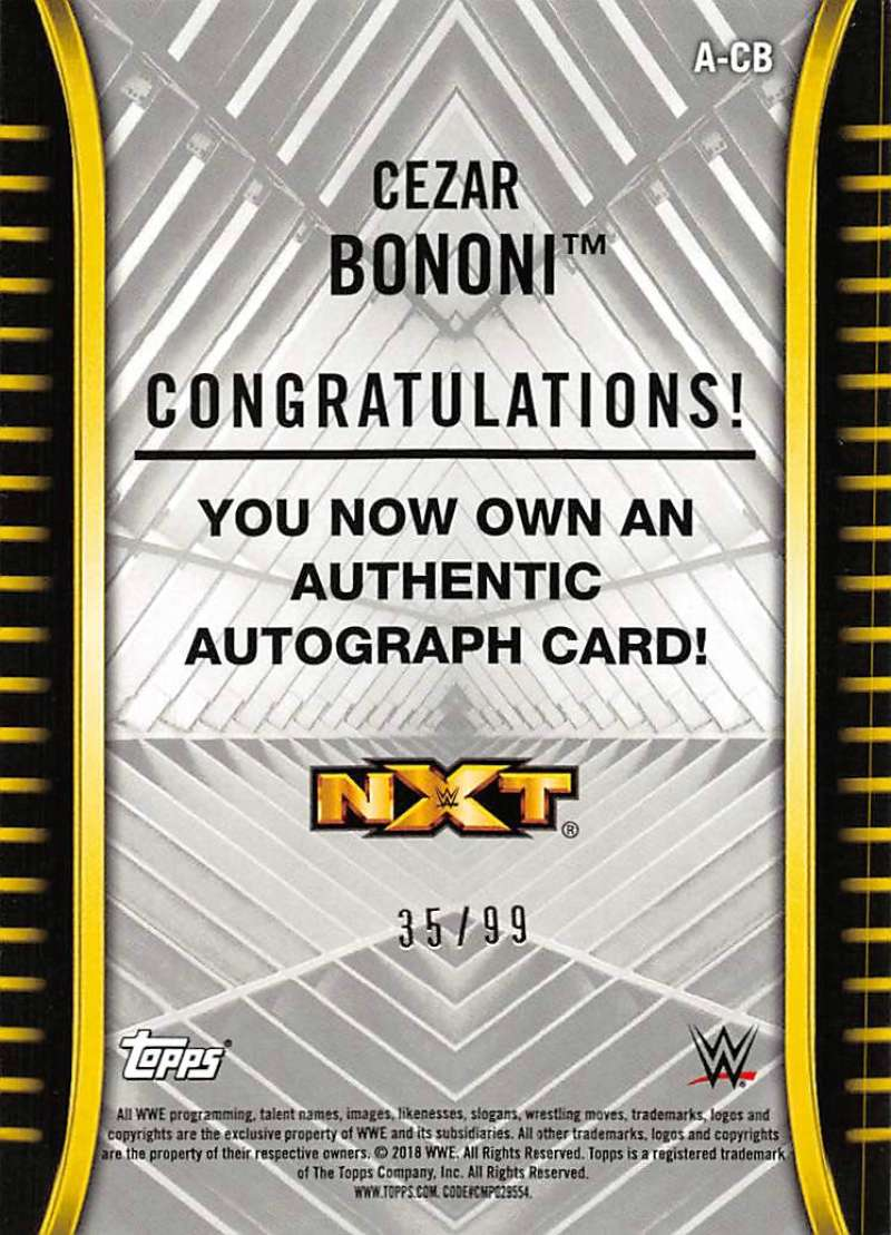 2018-Topps-WWE-NXT-Base-Bronze-Blue-or-Silver-Autographs-Pick-From-List thumbnail 41