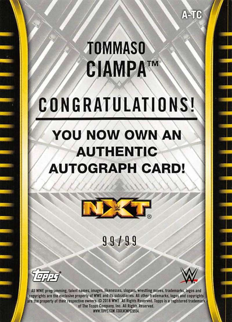 2018-Topps-WWE-NXT-Base-Bronze-Blue-or-Silver-Autographs-Pick-From-List thumbnail 49