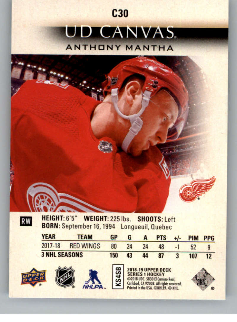 2018-19-Upper-Deck-Canvas-18-19-UD-Series-One-Hockey-Cards-Pick-From-List miniature 29